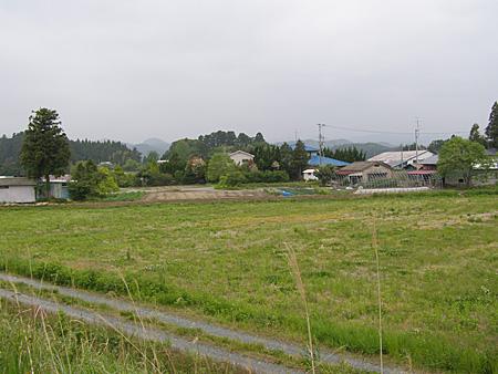1112_igarashi_02.jpg