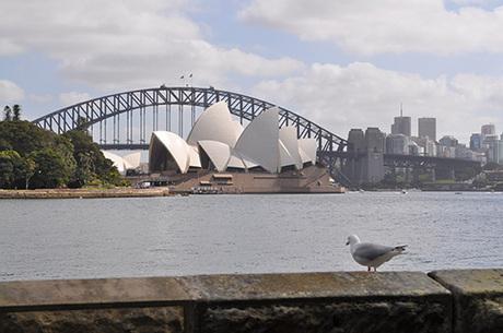 138 オーストラリア