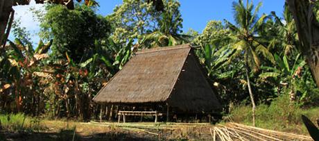 191 インドネシア、アロール島の伝統的建築